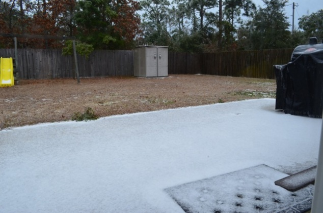 January 2014: Pensacola Blizzard