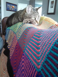 Stripy Cat, Stripy Blanket