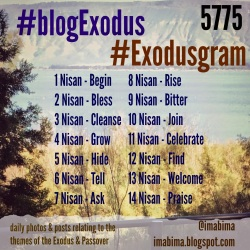 #blogExodus 5775 topics